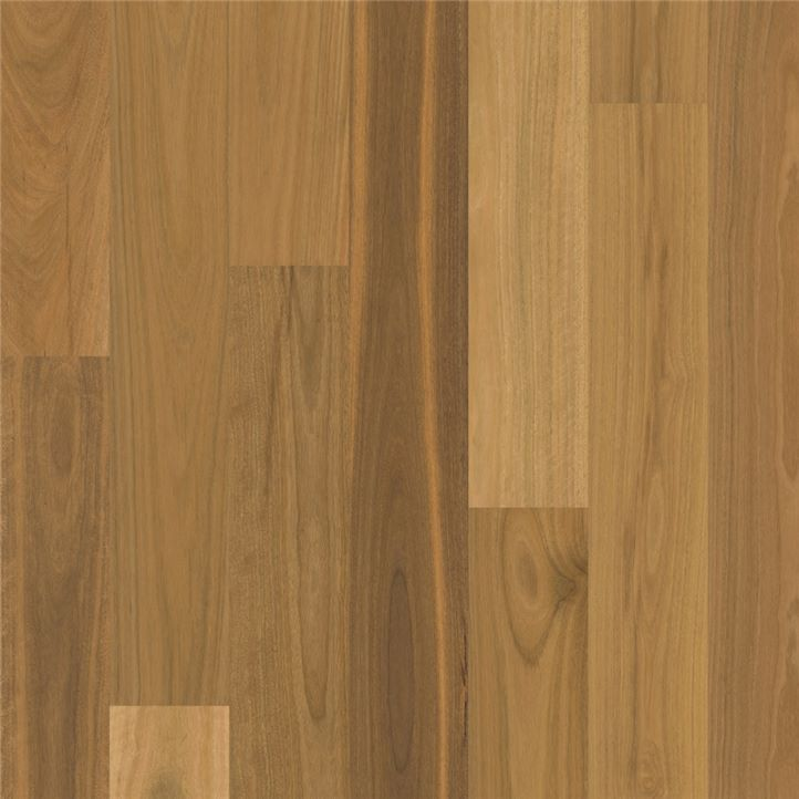 Matt brushed Spotted Gum 1 strip