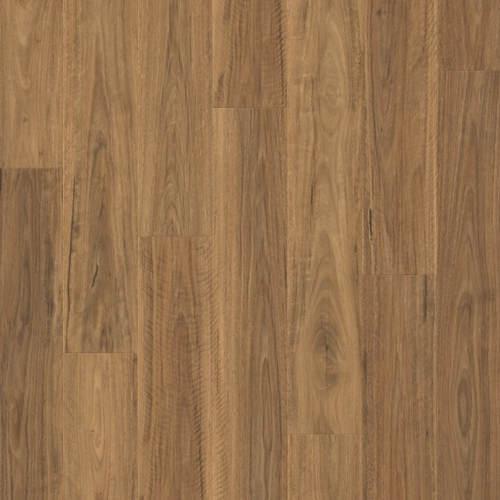 Spotted Gum IM4446